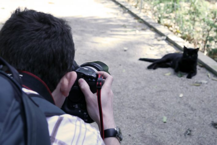 Taking Better Pictures of Your Pet With a Smartphone
