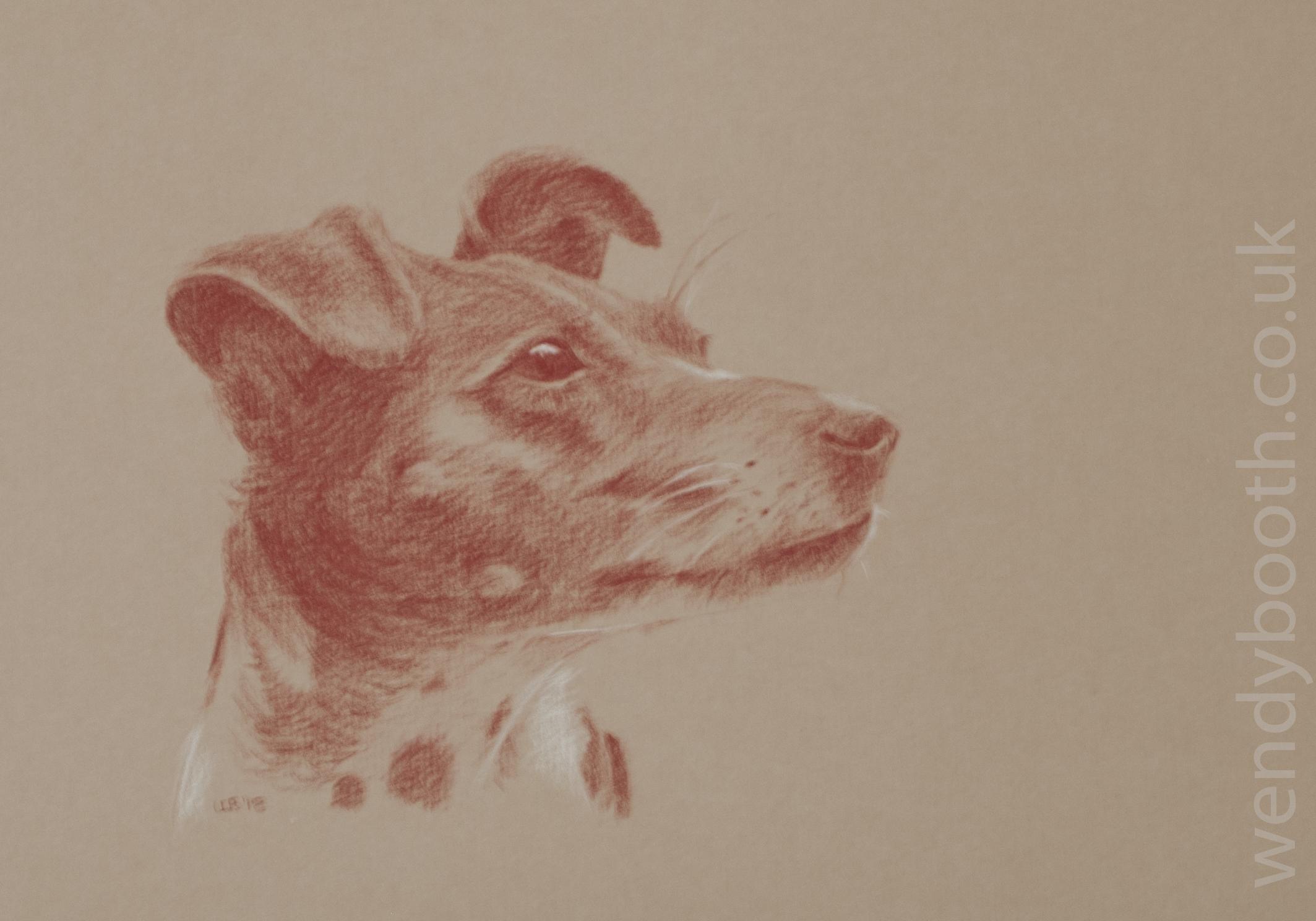 paper professional portrait artist commission grey color paper